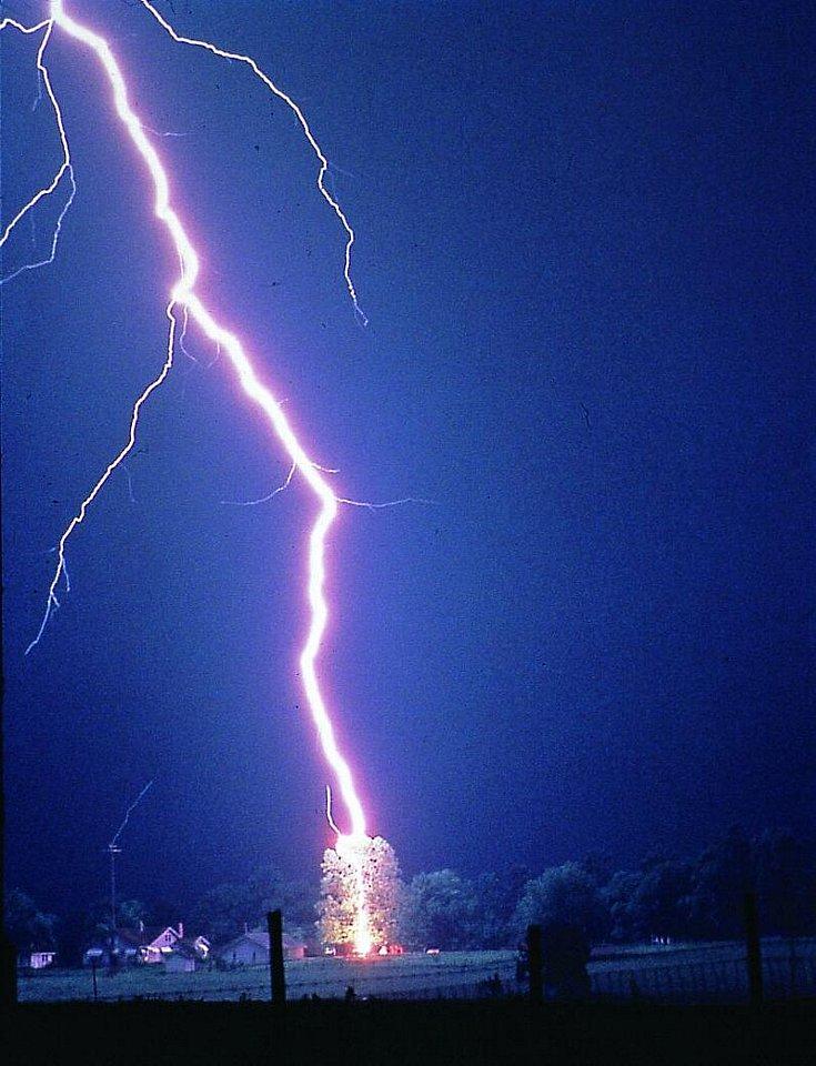 800px-Lightning_hits_tree.jpg