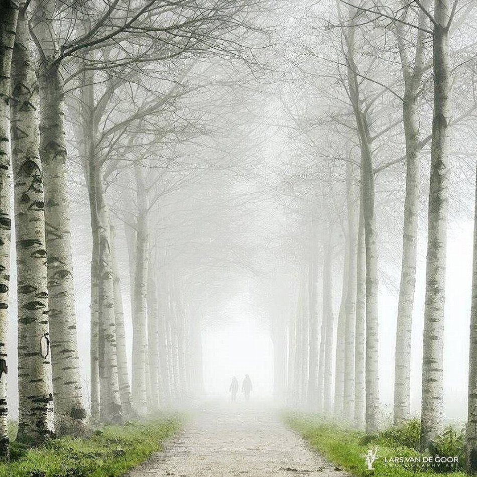 Walk of Life.jpg